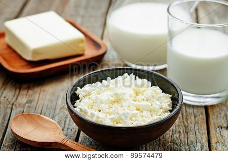 Dairy Products. Cottage Cheese, Butter, Milk, Cheese