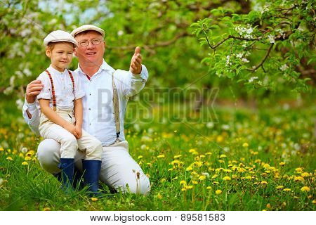Grandfather Sharing Experience With Grandson In Spring Garden