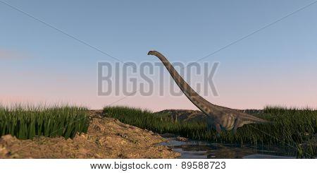 mamenchisaurus walking on watered terrain