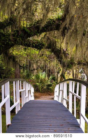 Magnolia Gardens Bridge 2