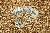 stock photo of soy bean  - Agricultural concept heap of soy beans and dollar banknotes - JPG