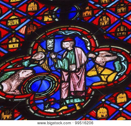 Saint Francis Of Assisi Animals Stained Glass Sainte Chapelle Paris France