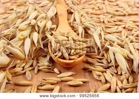 Organic Oat Grains On Wooden Spoon, Healthy Nutrition