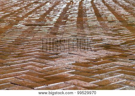 Shining Maroon Tiled Stone Decorative Pavement, Wet After Rain