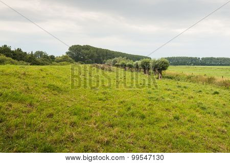 Picturesque Rural Landscape With A Dike