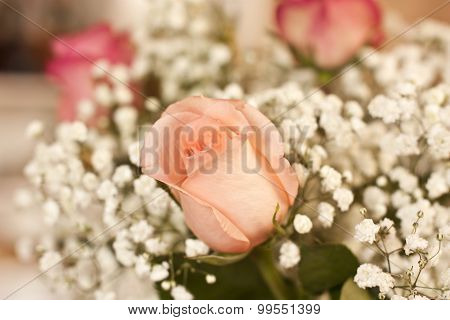 A flower background with a rose in the front and more blurred flowers at the back