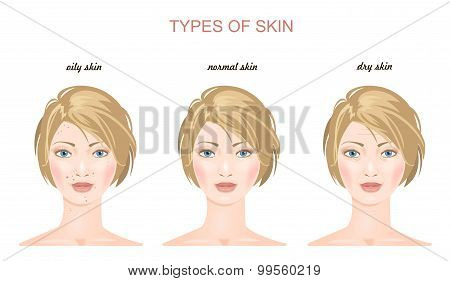 Face skin tupes. Vector