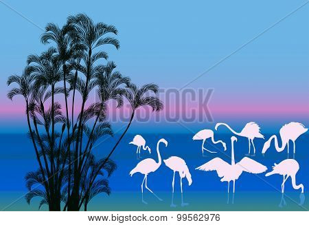 illustration with group of flamingo in water near palm trees
