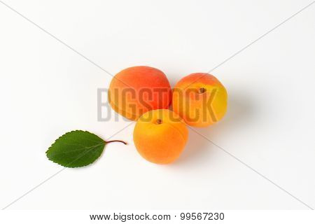 three whole fresh apricots with leaf