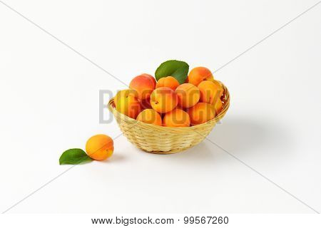 potion of whole apricots in the straw basket