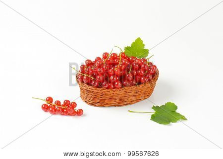 straw basket with fresh red currant