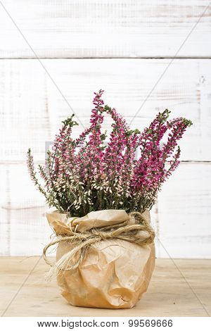 bouquet of heather
