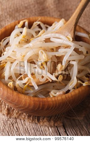 Raw Bean Sprouts Mung Macro In A Wooden Bowl. Vertical