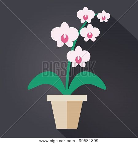 Flat style Houseplant Orchid