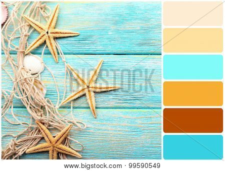 Sea stars and shells on wooden background and palette of colors