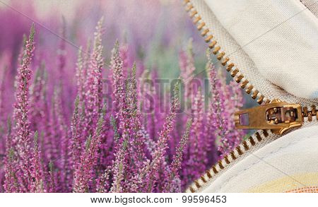 Zipper And Heather Flowers Landscape