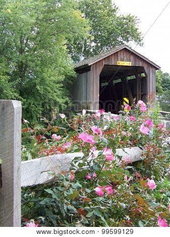 Covered Bridge in Bloom
