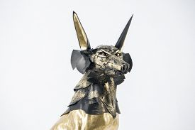 stock photo of jackal  - sculpture of the Egyptian god Anubis - JPG