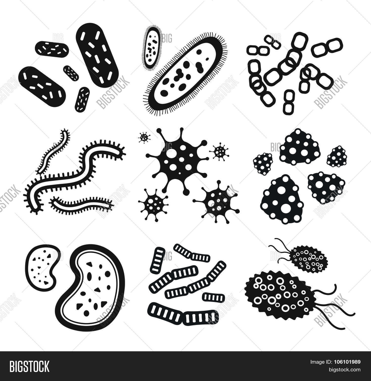 Bacteria virus black and white vector icons set. Biology ...