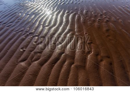 rippled wet sand, Prince Edward Island