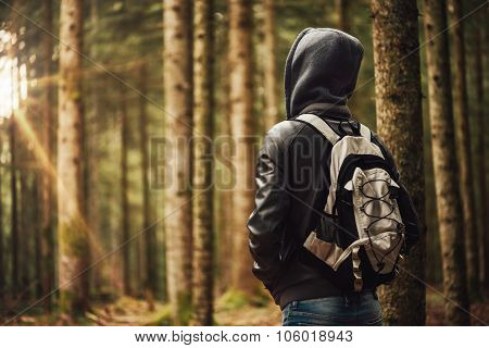 Young Explorer In The Woods