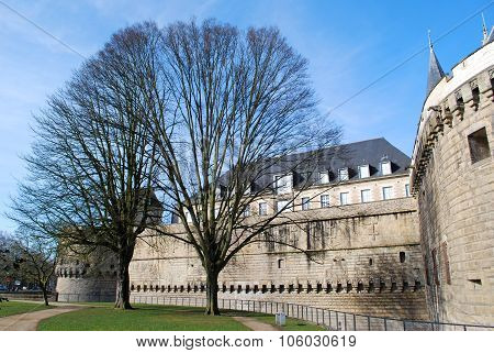 View To Castle In Nantes With Trees