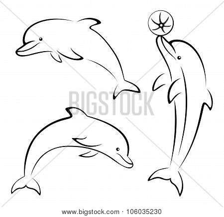 Dolphins and Ball Contours