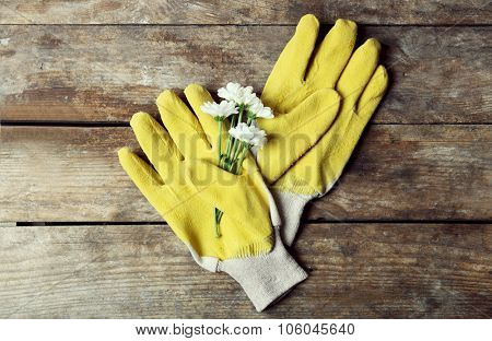 Composition of blossom and gardener's gloves on wooden background