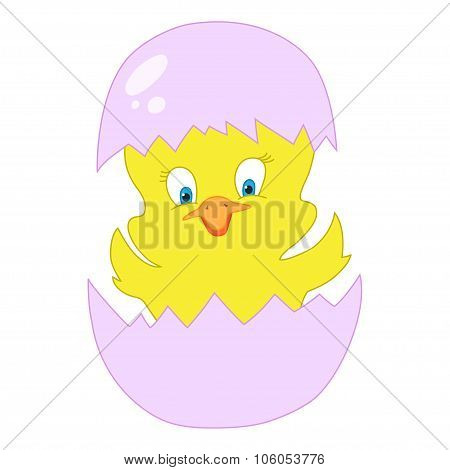 Cracked egg with cute bird inside