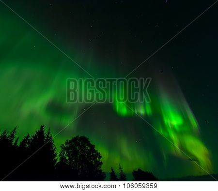Green Eddy Aurora