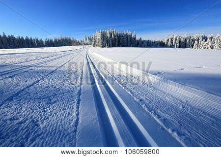 Winter Landscape And Trails For Skiers
