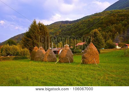 Hay in stacks - village in Serbia - travel background