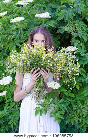 Beautiful Lady In White Dress Holding Bouquet Of Chamomile Flowers In Summer