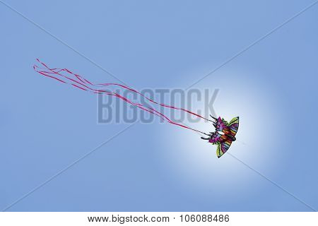 Colorful Butterfly Kite