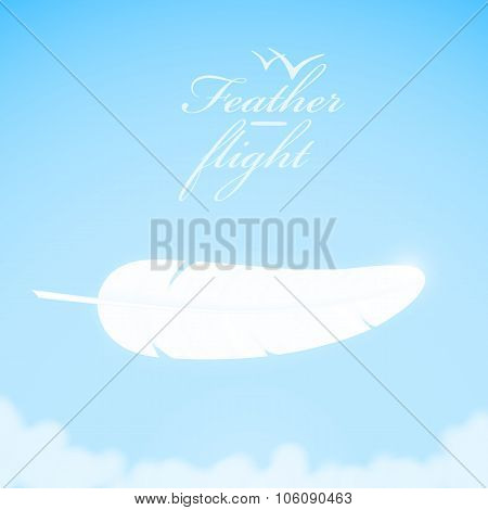 White feather in the sky background.