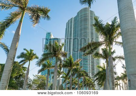 Miami High Rise Condominiums