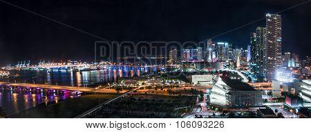 Miami Night Skyline