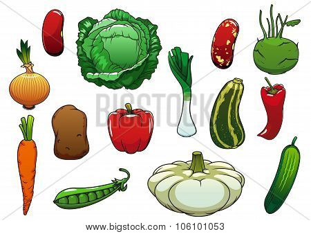 Healthy organic fresh vegetables on white