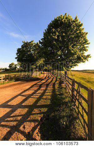 rural road . wooden fence