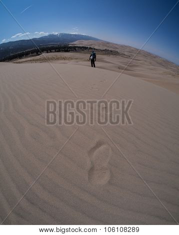 Backpacker Treks Along Sand Dune At Great Sand Dunes National Park