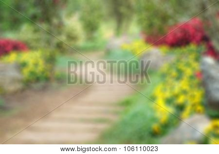 Blur Background And Pathway In The Park Garden