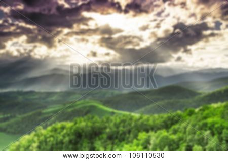 Blur Background Of Forest
