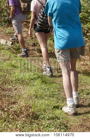 Three Trekkers Wearing Boots Walking On A Trail