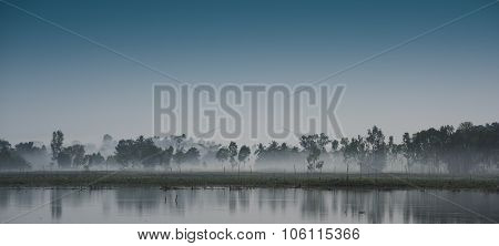 Heavy Mist Forming In Trees Round Lake Thailand