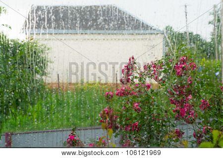 Water On Window