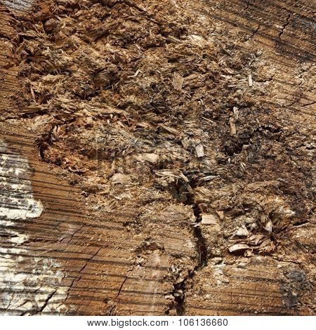 Natural Color Old Wood Grain Log Square Frame Texture Close-up