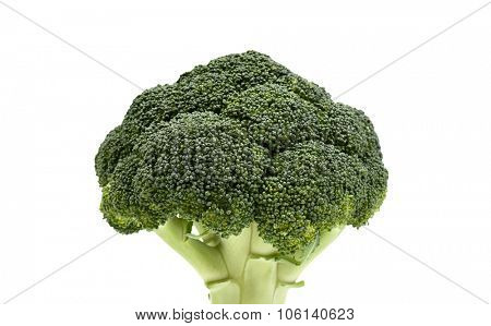 Broccoli. Healthy deep green vegetable isolated on white background