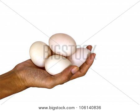 Duck Eggs On White Background with clipping path