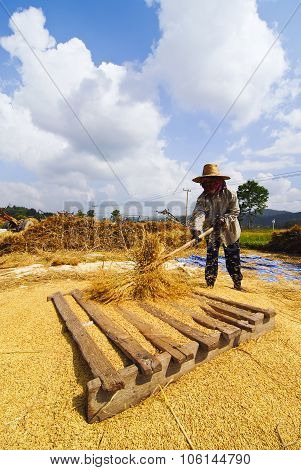 Farmer life northern of Thailand.