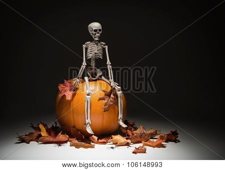 Creatively lit skeleton sitting on pumpkin with autumn leaves and spiders